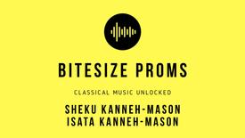 Prom 84 - September 12: The Swan - Sheku & Isata Kanneh-Mason