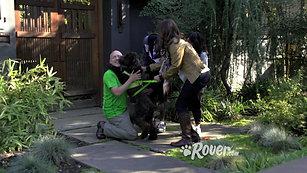 Rover.com 30sec