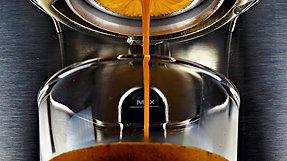 Fourth Dimension Coffee -  Jhony Lamos