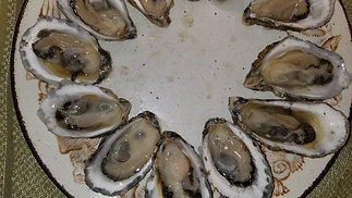 Seafood At Your Fingertips: Oysters on the Half Shell