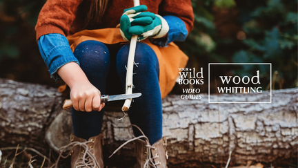 Wood Whittling  |  Video Guide