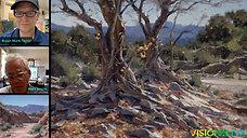 Matt Smith: Form in Landscapes