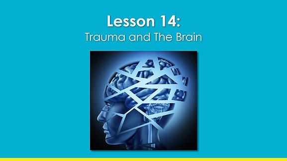 ABH_EN_lesson 14_Trauma and the Brain