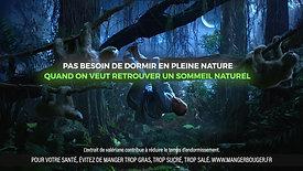 Novanuit - Sloth