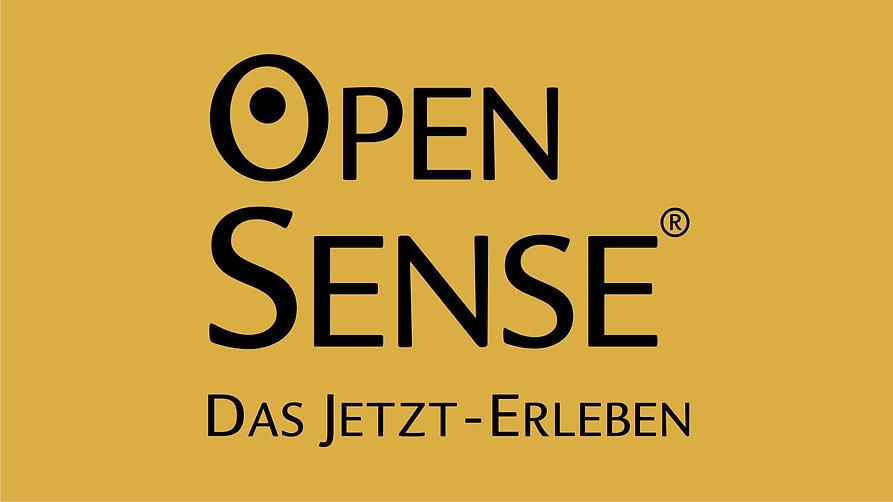 OpenSense Videos