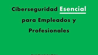 Ciberseguridad Esencial para Empleados y Profesionales