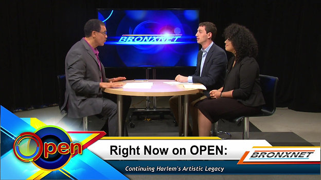 Harlem Arts Festival on Bronxnet