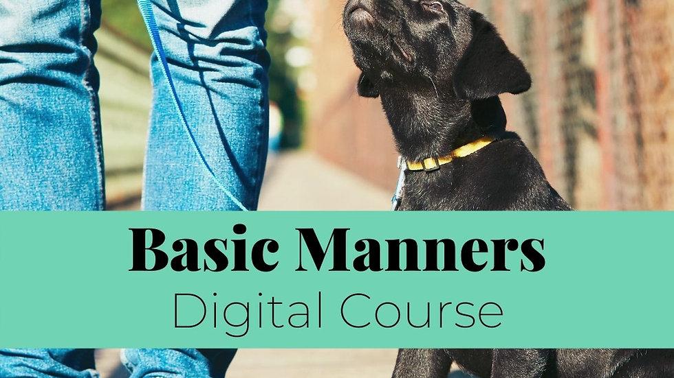 Digital Course Promo