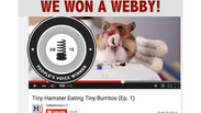 BEST HAMSTER 2015 WEBBY_1217683408001_3566787323001_Tiny-Hamsters-Eating-Tiny-Burritos---Ep-1-ProRes-