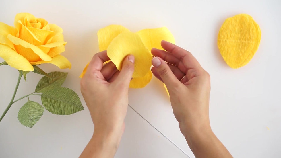 Crepe Paper Rose video course