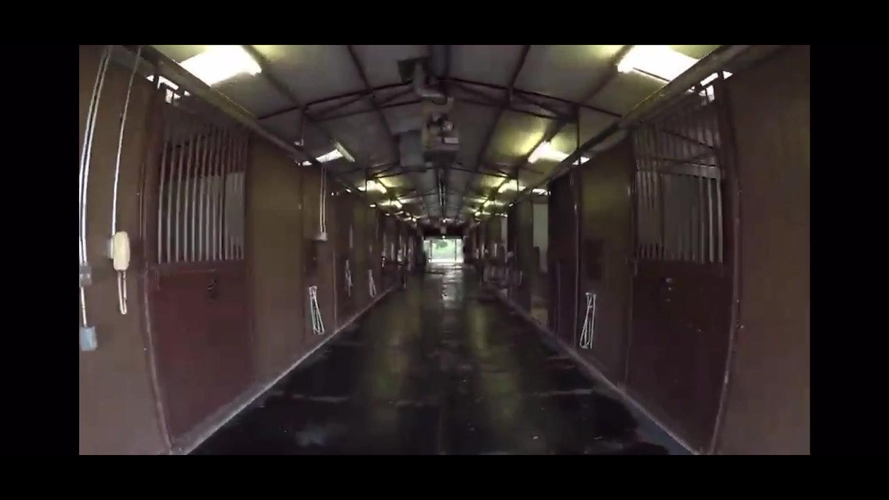 Palladio Cavallo Stables