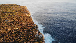North Head Scenic Drive Manly - Drone Short Video