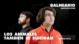 #SonidoRadar Ases Falsos + Los Animales tambien se suicidan