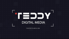 Teaser Teddy Digital Marketing