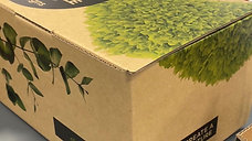 Whats in a Box?
