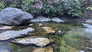 West Fork Pigeon River