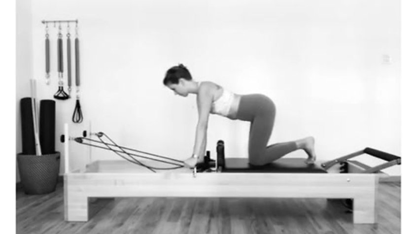 Quadruped Arms Series oln Reformer