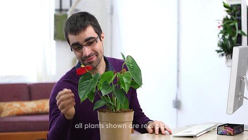 PlantPetZ