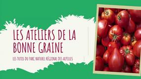 LES ATELIERS DE LA BONNE GRIANE - TUTO TOMATES
