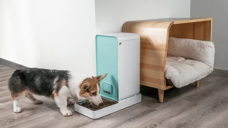 Fresh Element Smart Pet Feeder