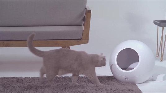 Cozy - Smart Pet home