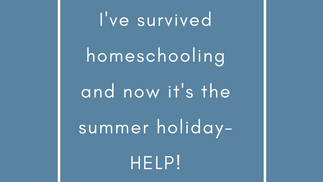 i've survived home schooling and now it's summer holiday-HELP!