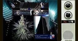 Weed, Marijuana, Gunja on The Resource Scholars Show