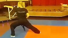 Blue Belt Kata - Full Speed