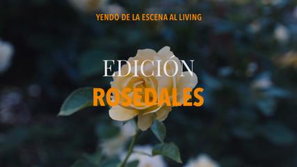 """3° Edición """"Rosedales"""""""