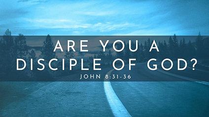 Are You a Disciple of God? John 8:31-36
