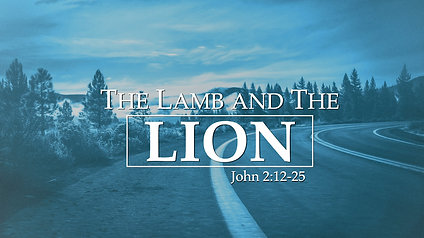 The Lamb and the Lion: John 2:12-25