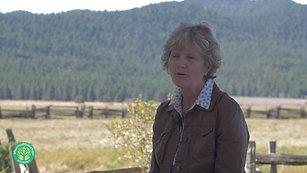 Five Dot Ranch Storybit