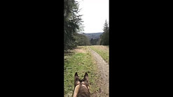 Video F 2nd horse rider eval 3-14-19
