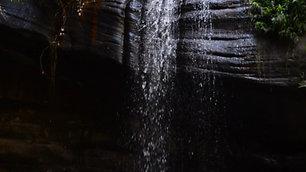 Buderim Waterfall - JB Reusable