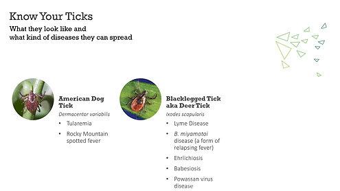 Tick Tips 2020 Slideshow