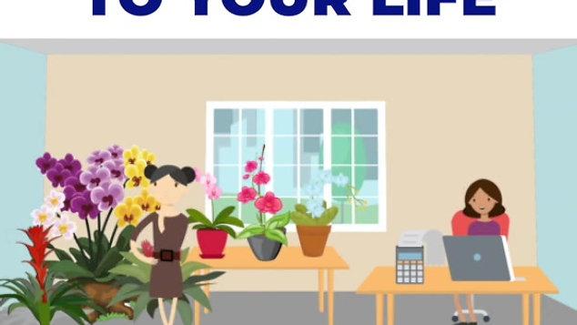 Plantio la Orquidea