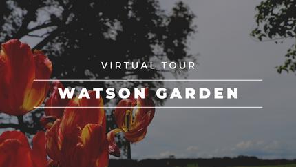 'Astiden Springs', Watson Garden