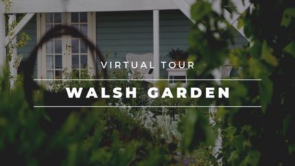 'Ballynew', Walsh Garden