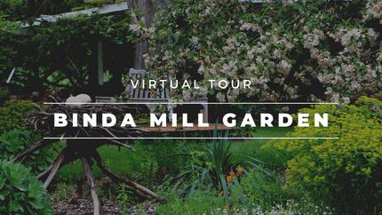 Binda Mill