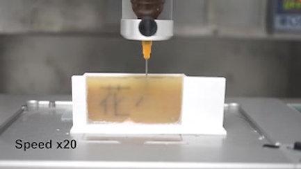 Engineering Natural Pollen Grains as Multifunctional 3D Printing Materials