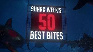 The Most Epic Shark Week Moments!   Shark Week's 50 Best Bites   SHARK WEEK 2018