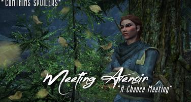 Meeting Avenoir   A 'Chance' Meeting