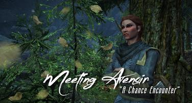 Meeting Avenoir   A 'Chance' Encounter