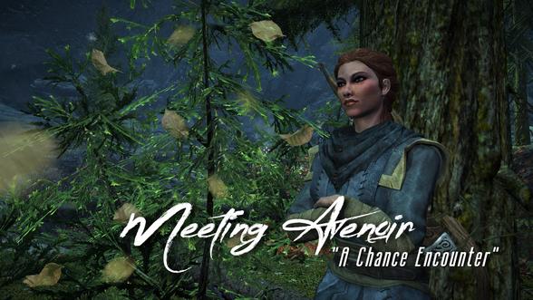 Meeting Avenoir | A 'Chance' Encounter