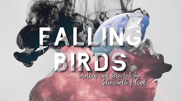 Falling Birds - Trailer