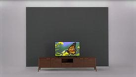 Televizyonunuzda Kanal Taşıma ve Silme İşlemi Nasıl Yapılır?