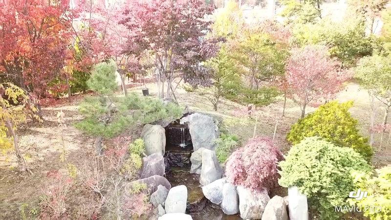 四季の庭2019秋