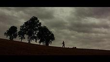 Camarão - Filme