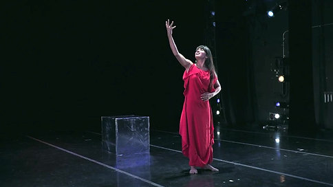 "Piñata Dance Collective ""Miss Venezuela"""