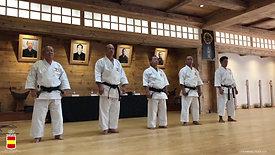 Curso Internacional de Karate